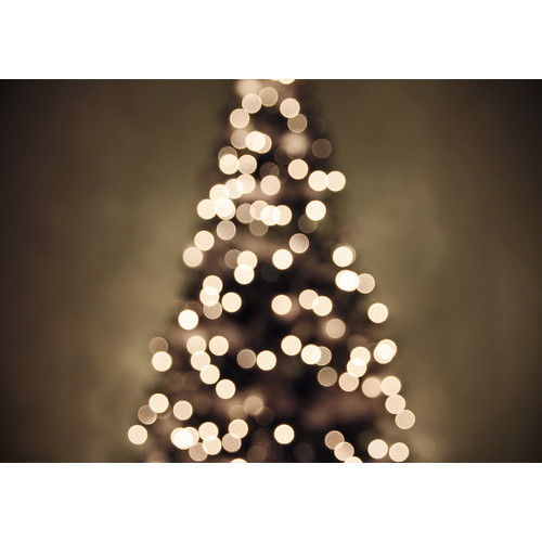 Fuck Yeah Christmastime   (clipped to polyvore.com)
