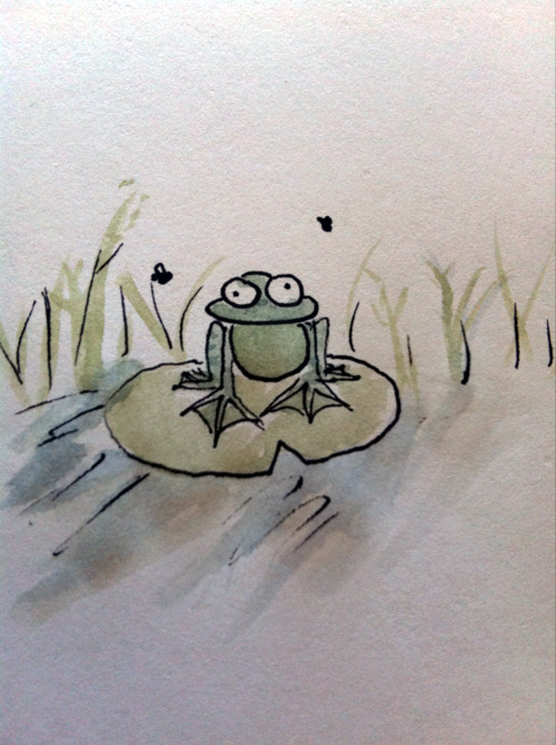 I haven't posted anything for a while so here's a dumb looking frog.