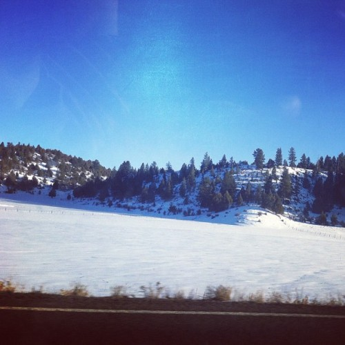 Snowy hills. #winterroadtrip  (Taken with instagram)
