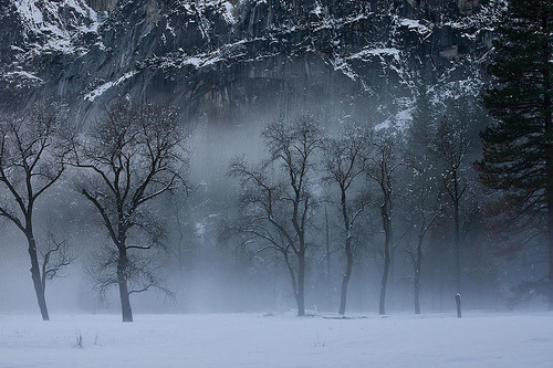 Yosemite Fog (by highsierramedia)
