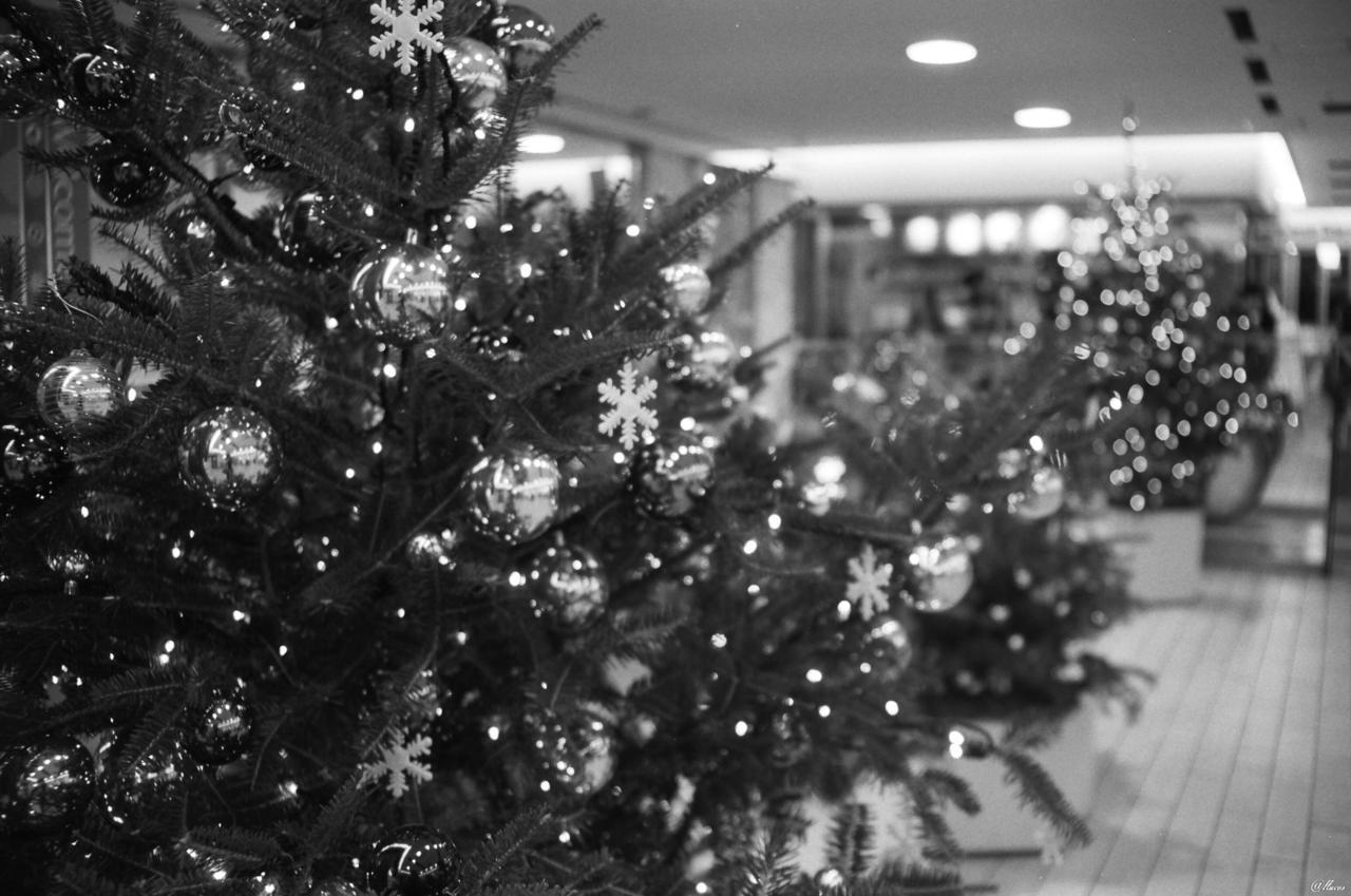 'Tis the season… 15 Merry Christmas, everyone!! Wishing you all the best :)  -from Tokyo, 12:00am Yuko<3