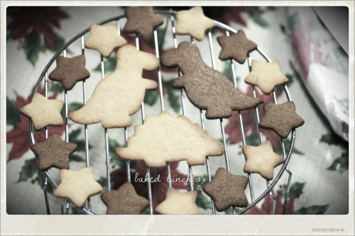 Vanilla and Cinnamon Dinosaur Cookies surrounded by stars and their best friend, Stegosaurus!  Coming soon! 01.2012