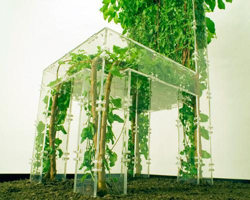 mothernaturenetwork:  7 awesome examples of living furniture