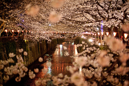misslittlefashion:  I'd love to just walk through here with someone. Enjoy the beauty and the lights. Dream date.