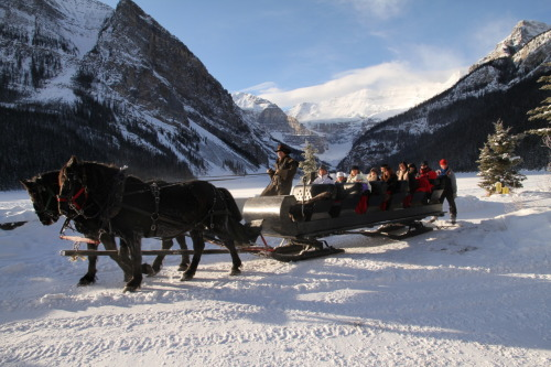 Sleigh ride photos have begun here at Chateau Lake Louise! Our photographers are running around capturing photos at every opprotunity. Come out to the Lake and enjoy a beautiful Brewster Sleigh Ride and check out your photo at our Chateau Film Lab!