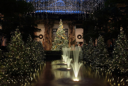 Christmas In Longwood Gardens by trek22 on Flickr.