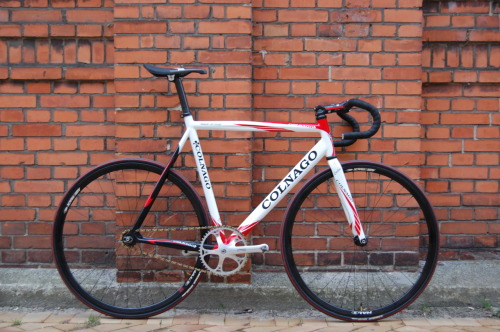 Colnago by Elrey  via Pinkbike