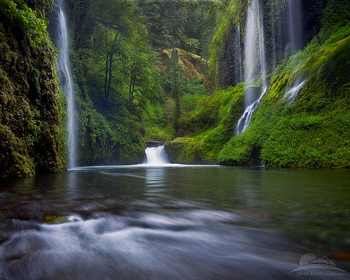 katiekashmir:  Columbia River Gorge, Oregon