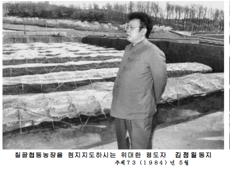 Kim Jong Il visits a collective farm in May 1984. Source: Rodong Sinmun