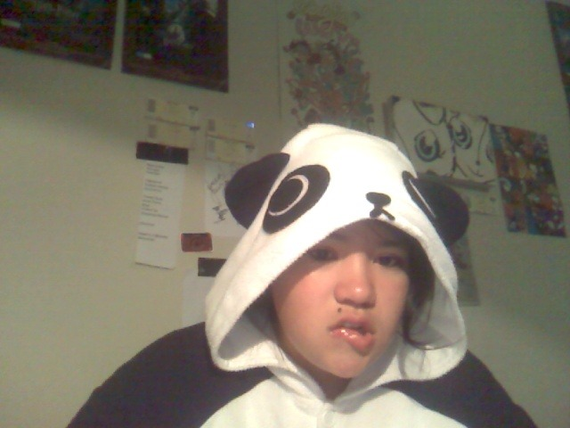 Is this working, am I seducing anyone, being dressed as a panda? I'm a panda, bitches love Pandas.
