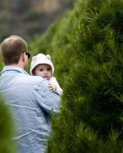 The economy may still be floundering. But the Christmas tree business is booming. Americans will spend an estimated $3.4 billion on Christmas trees this year, the highest amount since 2007. 25 million -– Number of real Christmas trees Americans will buy this year $800 million — Estimated retail cost of those trees 10 million — Artificial trees Americans will buy this holiday season $2.6 billion — Estimated retail cost of those artificial trees 80 — Percent of all artificial trees that are manufactured in China More Christmas tree facts!