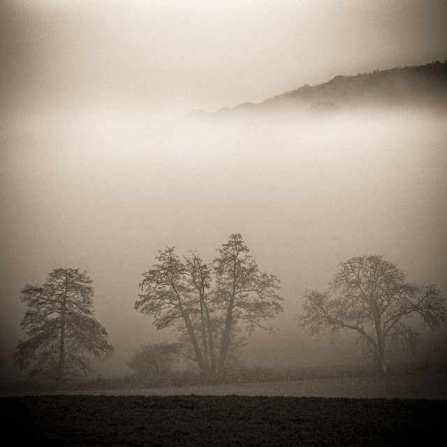 601val d'oise-sepia by R E M I B R I D O T on Flickr.