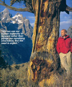 Yvon Chouinard, you are amazing.