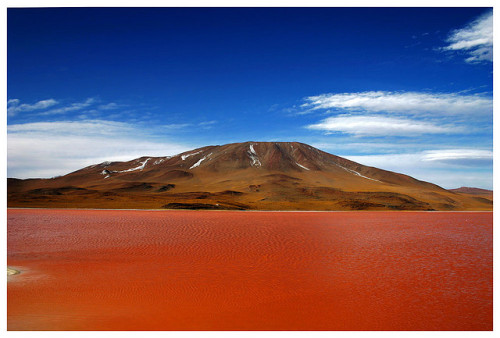 Laguna Colorada by hallenhalma on Flickr.