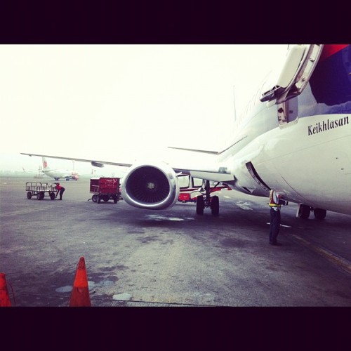 Ready to flight  (Taken with instagram)