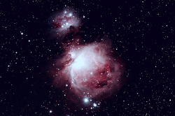 m42 - The Orion Nebula by Patrick.Wilson. on Flickr.