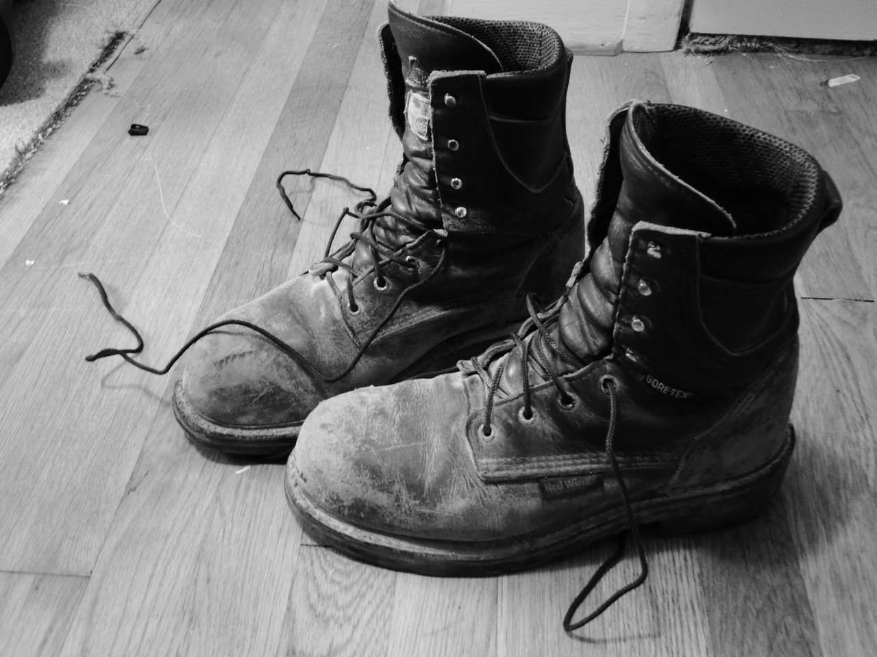 One thing I know about well is work. Best pair of boots I ever owned.