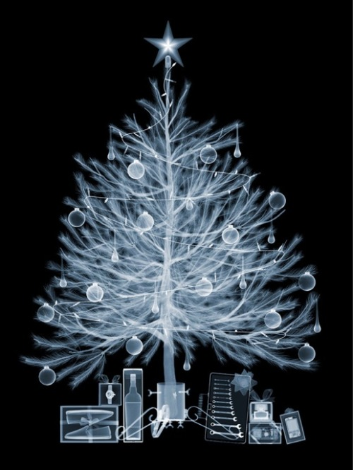 laughingsquid:  X-Ray Image of a Christmas Tree & Presents by Nick Veasey