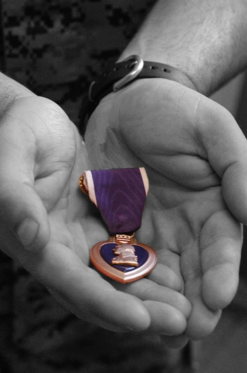"The Purple Heart was established by General George Washington at Newburgh, New York, on 7 August 1782, during the Revolutionary War.   How Much Is That Purple Heart In The Window? by Scott Simon December 24, 2011 There's a Purple Heart in the window of the A-Z Outlet pawnshop in Holland, Mich., right between a silver necklace and an inexpensive watch. Bryan VandenBosch says a young man walked into his shop just before Thanksgiving to pawn a medal that the U.S. government awards to soldiers who have been ""wounded or killed in any action"" while serving. He says that he doesn't know why the young man needed or wanted to pawn his medal. ""He did say a couple of things — like he won two of these in Afghanistan — but I didn't ask, 'Doing what or how?' It's not for me to ask,"" Mr. VandenBosch told us. He also won't say how much he paid him for the Purple Heart. ""I don't talk about that,"" he says. ""He needed a little to get by, so I helped him."" Bryan VandenBosch says he will not sell that Purple Heart. He put the medal in his window to honor men and women in the military. People in Holland, Mich., noticed — and started calling. ""They didn't want to buy it,"" says Mr. VandenBosch. ""They just wanted to help the guy. I said, 'Don't worry, I'm not selling it to anyone.'"" There is much that's unknown in this story. What would lead a man to pawn a Purple Heart? Was he down on his luck? Sickened by war? Do we even really know that the Purple Heart was his, or something that he inherited, found or even filched? But Bryan VandenBosch knows that pawn shops are lenders of the last resort. He says that people come in to pawn things they have loved because they are short of cash and need to see a doctor, buy shoes or pay for a funeral. There is a story behind each item in his store: the hocked wedding ring or set of earrings; the toy held by a child who has gone away; or the watch inscribed, ""Love forever,"" that's sold when love, or money, have run out. ""People who come in here aren't having a good day,"" he says. ""They are often having problems and are a little embarrassed. I don't add to that."" The story of the Purple Heart in the pawnshop window reminds us that to truly help people, you don't need to do worthy things like go to Bangladesh or set up 501-3C corporation. ""Look at your neighbors,"" says Bryan VandenBosch. ""Look at people all around you. You've got friends, I'll bet, who can use some help paying for food or gas to get to their job. … If you really want to help people, you don't have to look very far."" Listen to the Story"