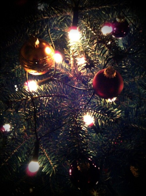 Bulbs and lights, Christmas style (Photo by mrcktz)