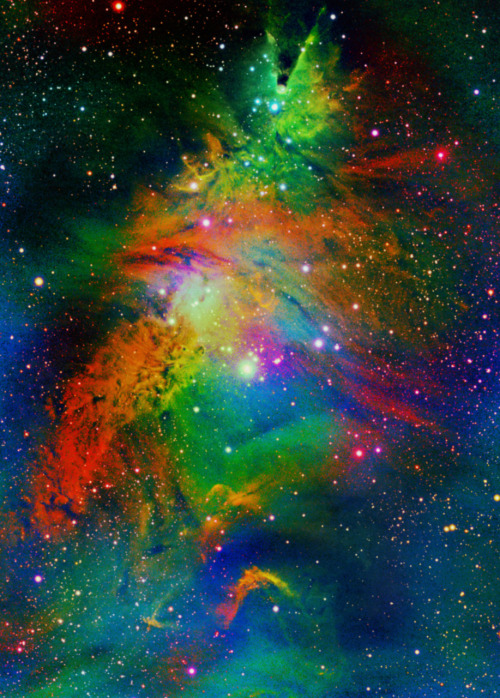 weareallstarstuff:  Christmas Tree Nebula
