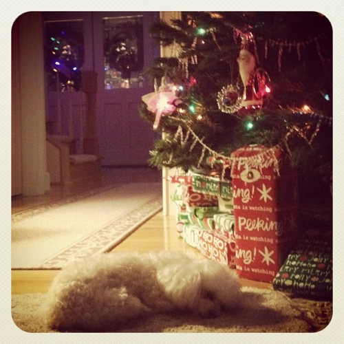 prime location to wait for santa. (Taken with instagram)
