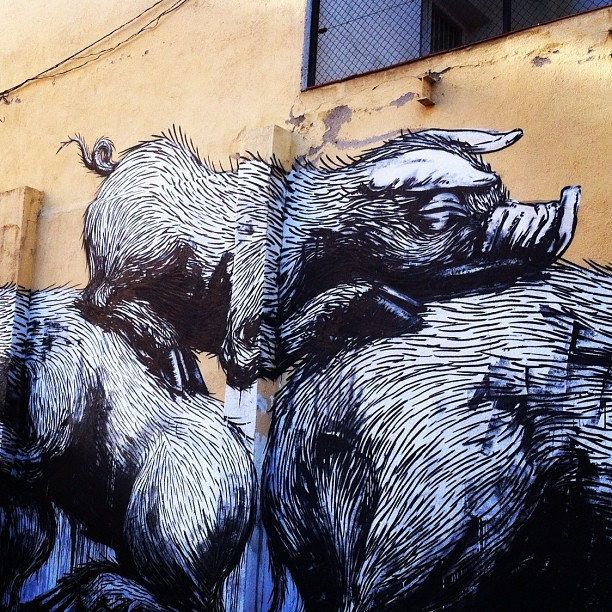 #Roa #Streetart #Madrid #Lavapies (Taken with instagram)