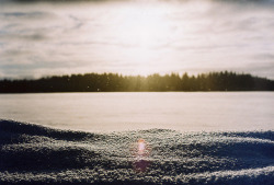 sun by Liis Klammer on Flickr.