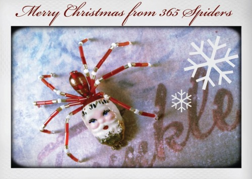 Merry Christmas! Image from 365 Spiders.