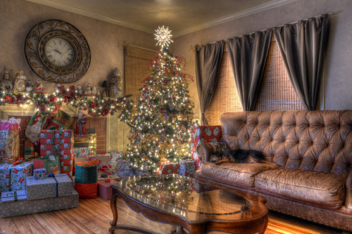 HDR Christmas Tree by chris_hillman on Flickr.