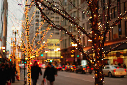 masius:  holiday lights and shoppers (by cb804)