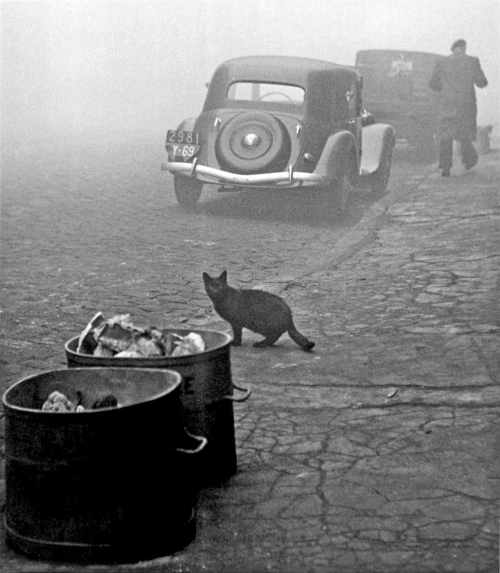 Sabine Weiss Paris, 1950s Thanks to undr