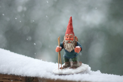 Merry Christmas from Gnome Culture!