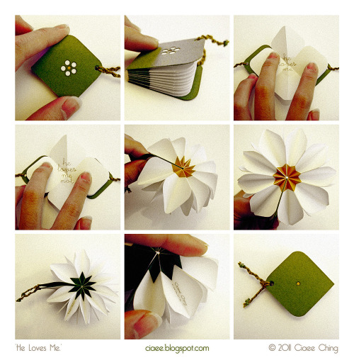 fuckyeahbookarts:  Daisy book! lorinepepper:  He loves me, he loves me not.He loves me. by *ciaee