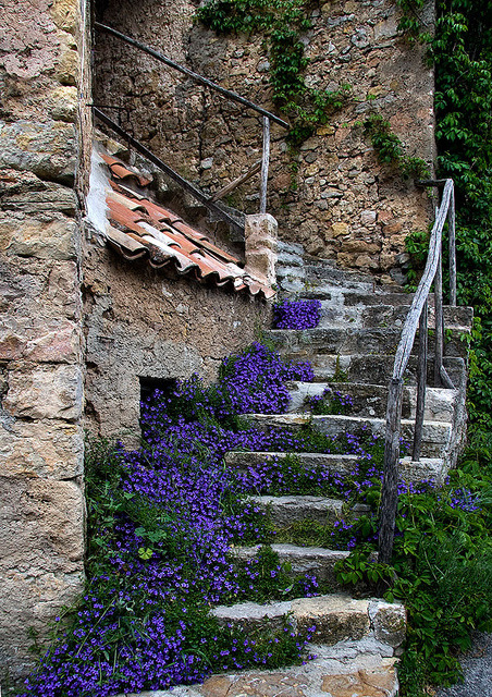 Stairs in Tourtour; Provence France by Rainer Fritz on Flickr.