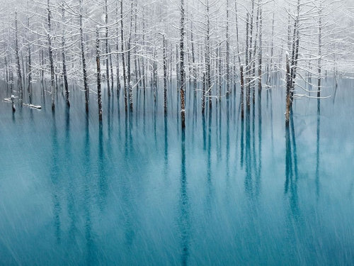 Blue pond & first snow by Kent Shiraishi