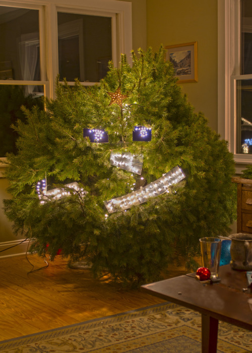 herestonow:  Our Christmas Tree was a little… uhh… lumpy… so we made this. My parents are big fans of LSP