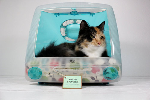 Upcycled Pet Bed by Atomic Attic <3.  I think all my cats are too fat to fit inside of it.
