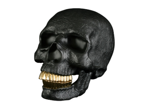 Gold Teeth Skull (via tomopop)