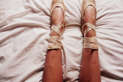tranquillus:  (by Amy F. Hughes)