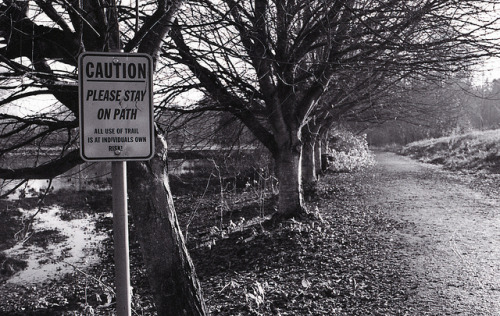 Day 341/365 - Stay on Path on Flickr.