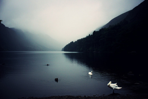moanarch:  Glendalough by ellieswellies on Flickr.