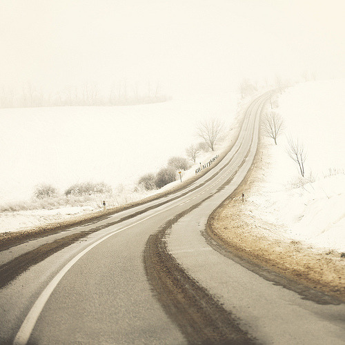 magicalnaturetour:  Winter Series 09 (by Edgar Barany) :)