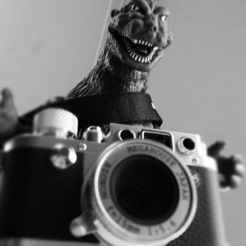 Actually, it's a GIANT camera! Rawr!