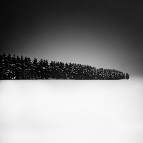 artchipel:  Uwe Langmann - A Row Of Trees