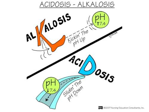 lalainern:  acidosis and alkalosis
