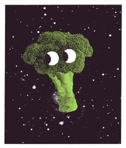 Broccoli in Space by Tim Lahan on Flickr.
