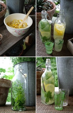 Homemade Lemonade recipe!