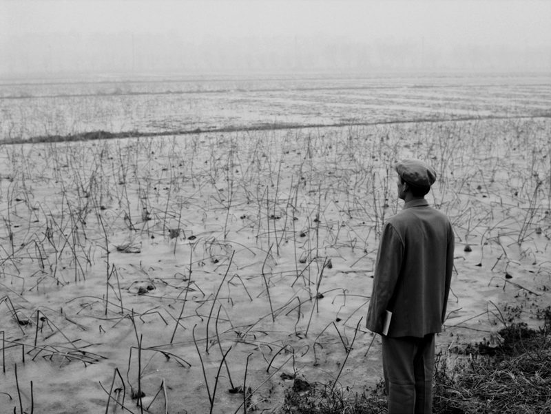 mianoti:  Wang Ningde, Some Days 49