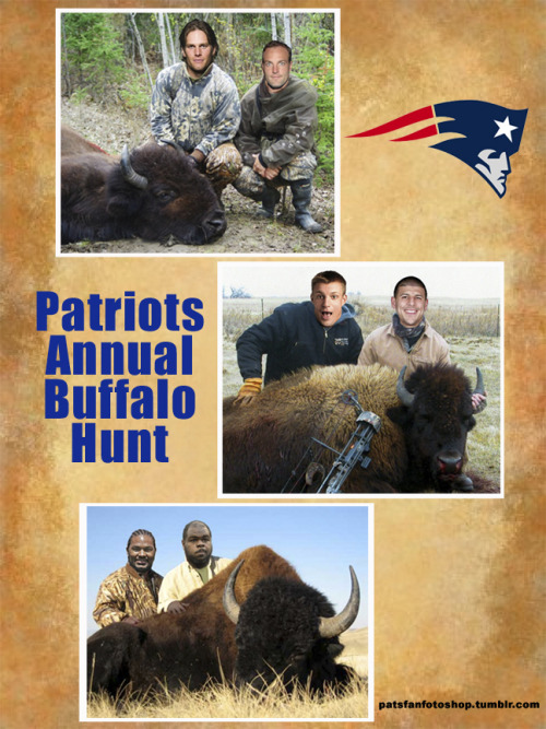 Photo book page from the Patriots Buffalo hunt.  Looks like it was a success!!